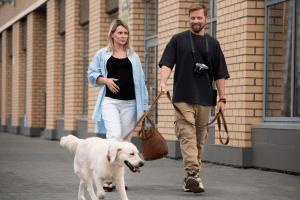 Dog Walking Dangers