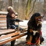 Senior Dogs & Ones with Disabilities Benefit from Exercise Too