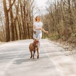 Types of Exercise That Provide Mental Stimulation for Dogs