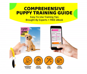 AMZpets Dog Training Set
