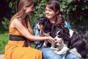 socialize dogs
