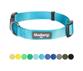 Blueberry Pet Classic Solid Color Collection