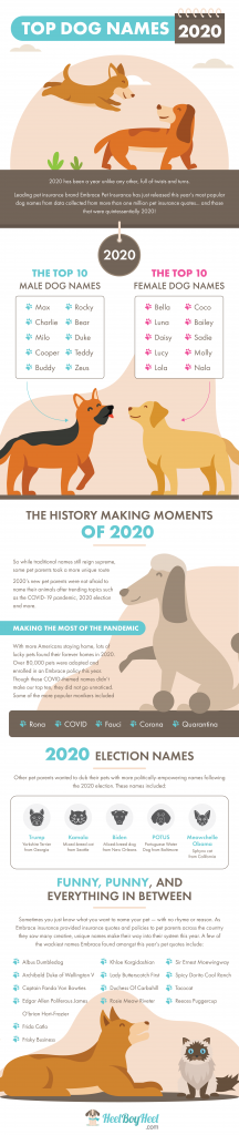 Top Dog Names 2020 Infographic