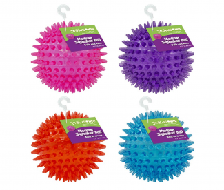 Gnawsome Medium Squeaker Ball Dog Toy
