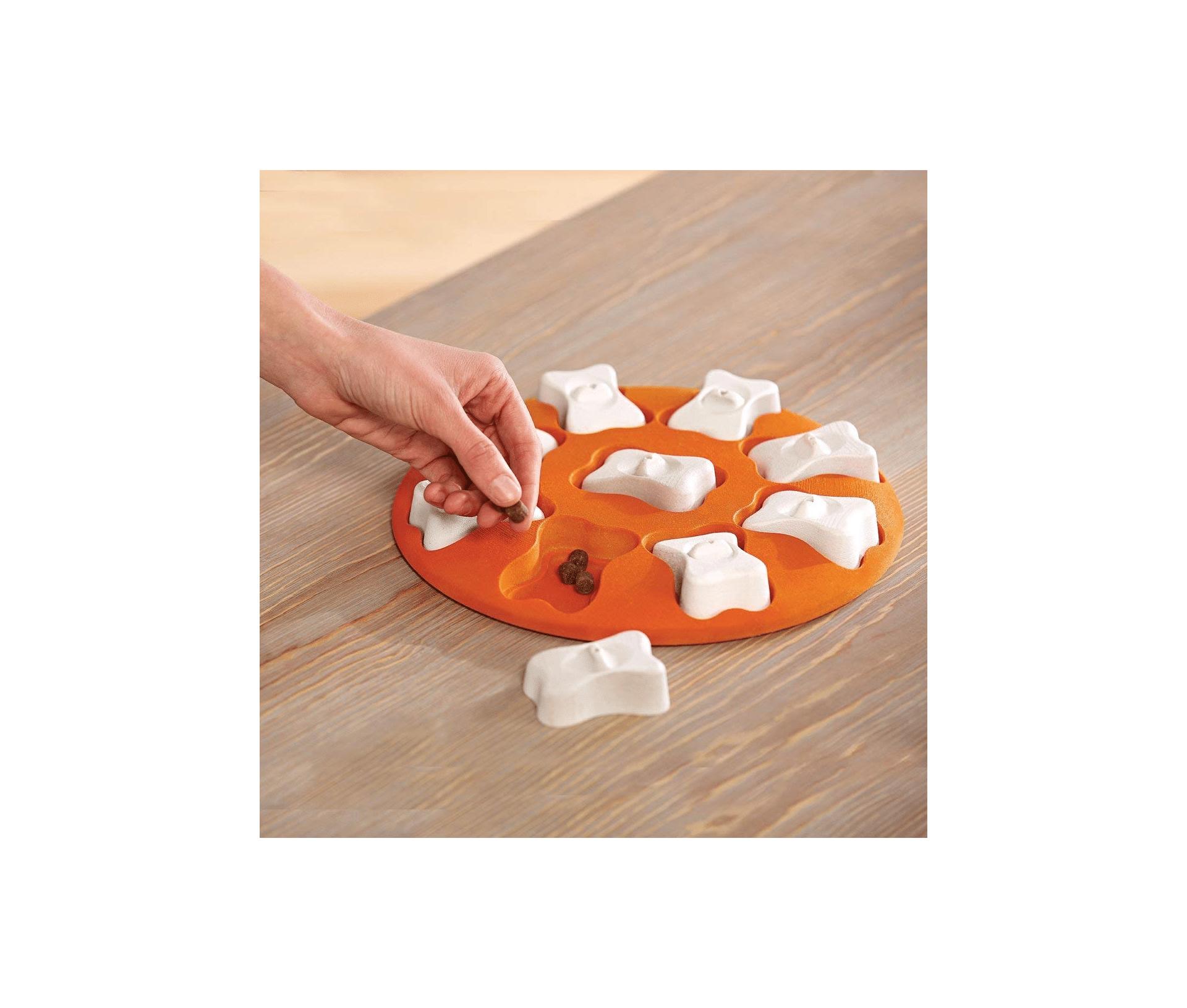 Nina Ottosson Dog Smart Beginner Dog Puzzle Toy