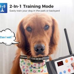 WIEZ-Dog-Fence-Wireless-&-Training-Collar-1